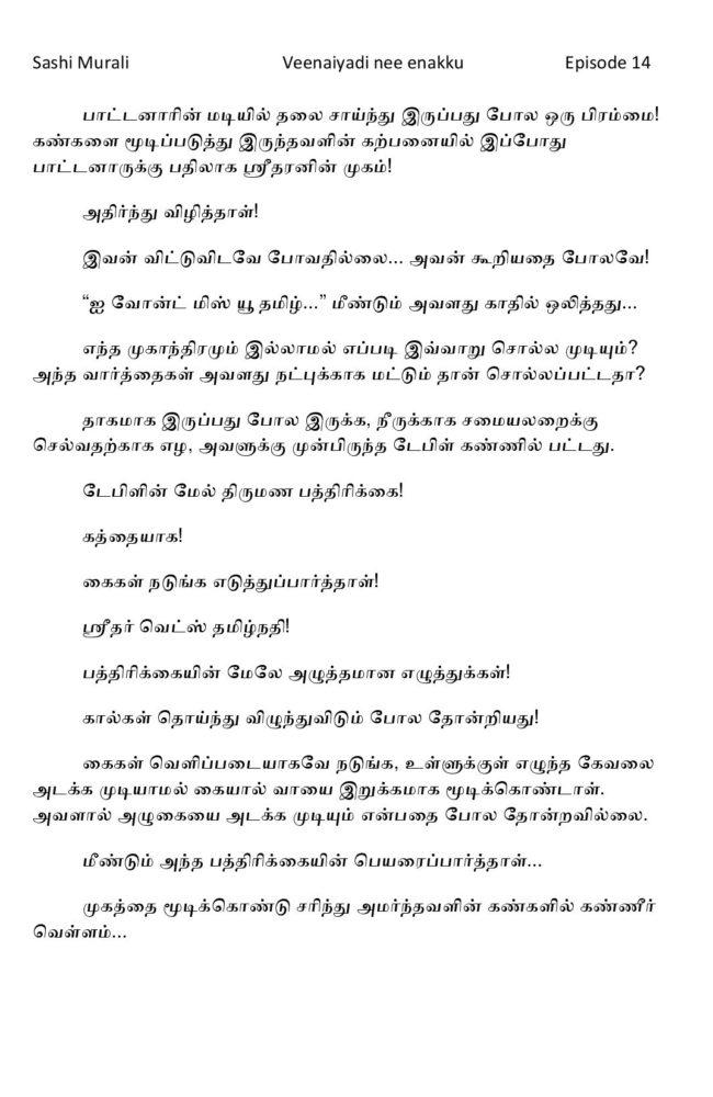 vne14-page-011