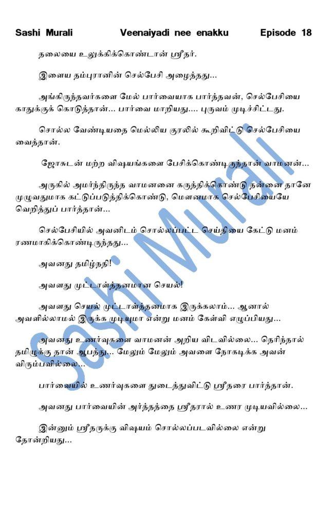 vne18-page-006