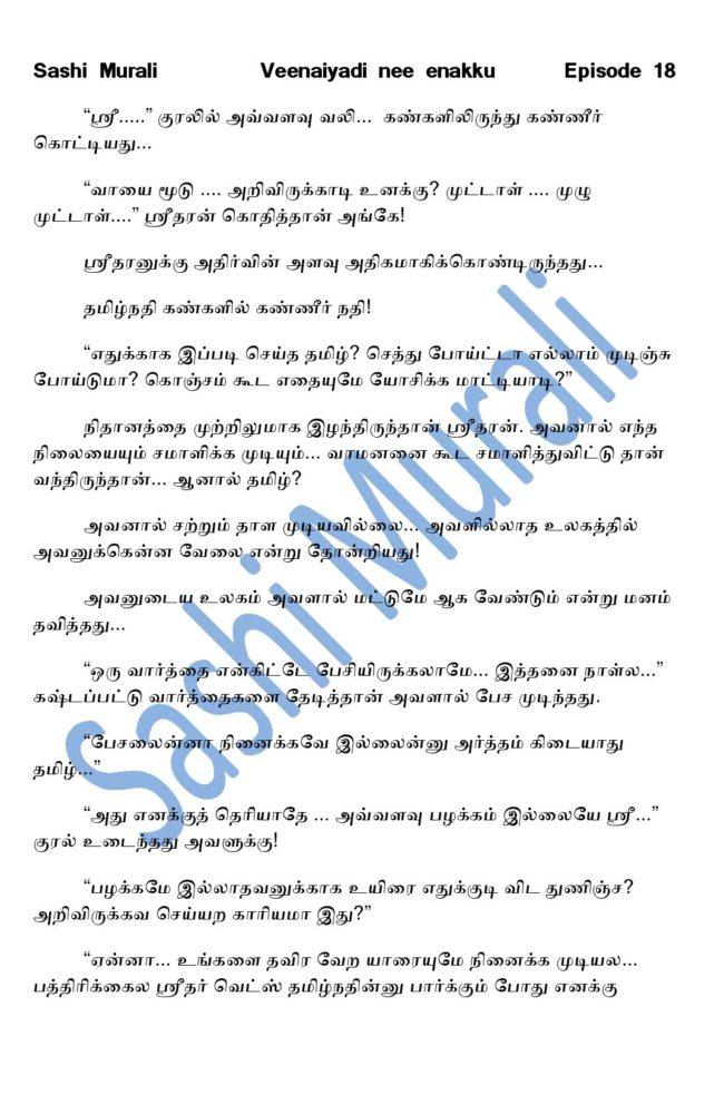 vne18-page-011