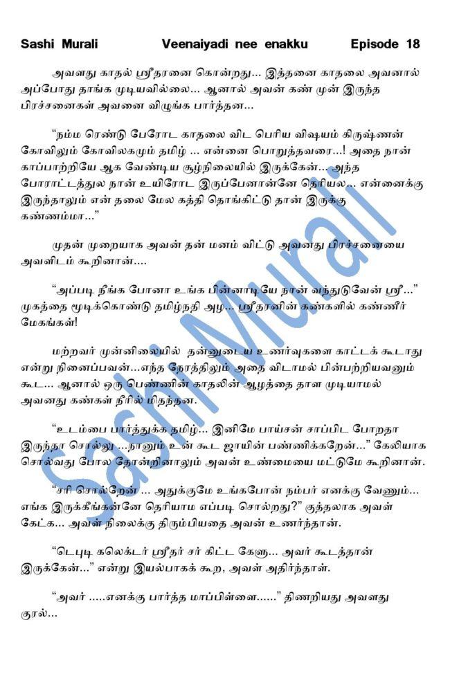 vne18-page-013