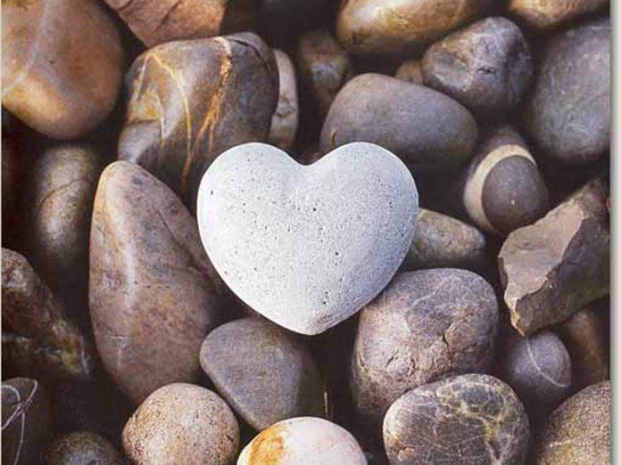 Love-Nature-Wallpapers-mobile-22a713de